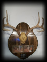 jake_rowe_taxidermy_website012004.jpg