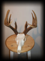 jake_rowe_taxidermy_website012034.jpg